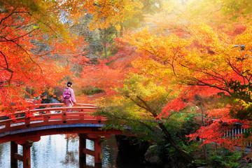 Fototapeta Orientalny Wooden bridge