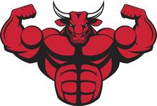 Strong Ferocious Bull