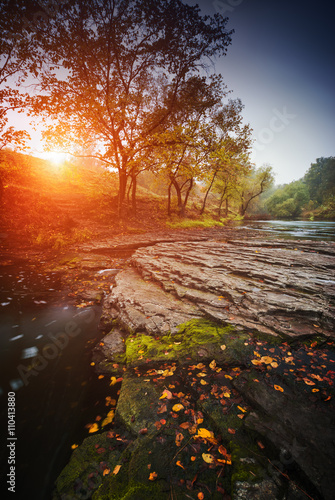 Printed kitchen splashbacks Brown River at sunrise in the forest