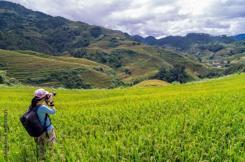 Foto auf Gartenposter Reisfelder Photographer at Rice fields.