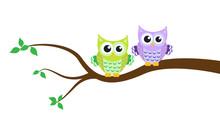Cartoon Owl On A Tree