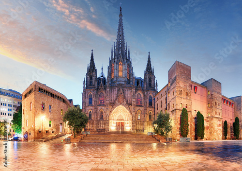 Foto op Canvas Barcelona Gothic Barcelona Cathedral at night, Spain