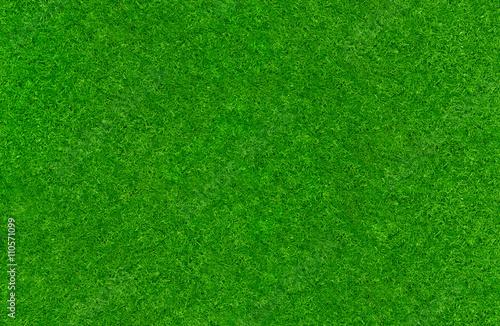 Dobrze utrzymany trawnik