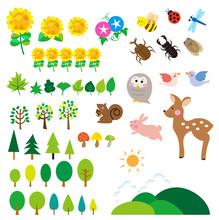 夏の森 動物たち 昆...
