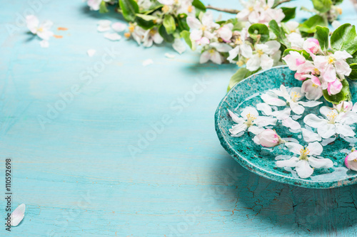 Poster Spa Aroma bowl with water and white blossom flowers on Turquoise blue shabby chic wooden background. Wellness and spa concept. Spring blossom background