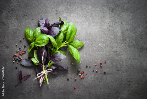 фотография  Green and purple basil.
