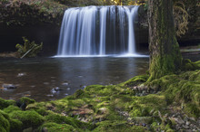 Waterfall With Mossy Tree And Rocks In Foreground/Waterfall With Soft Lighting In Background With Mossy Tree And Rocks At Riverbank