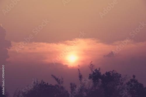 Foto op Plexiglas Crimson The sun over the forest.
