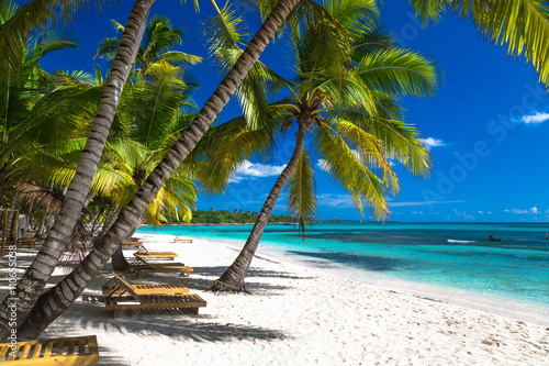 Fotografia, Obraz  Tropical beach in caribbean sea, Saona island, Dominican Republic