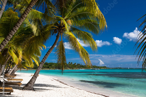 Carta da parati Tropical beach in caribbean sea, Saona island, Dominican Republic