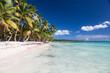 Beautiful caribbean beach on Saona island, Dominican Republic