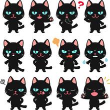 目つきが悪い黒猫のイ...