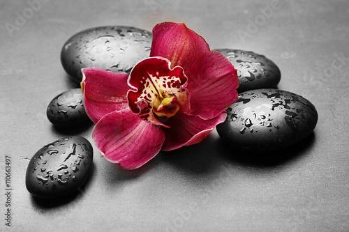 zdrojow-kamienie-i-czerwona-orchidea-na-szarym-tle