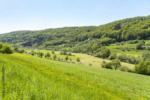 obraz dibond rural springtime scenery