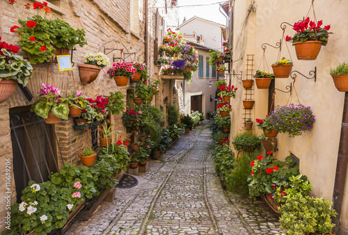 Fototapety, obrazy: Floral streets of Spello in Umbria, Italy.