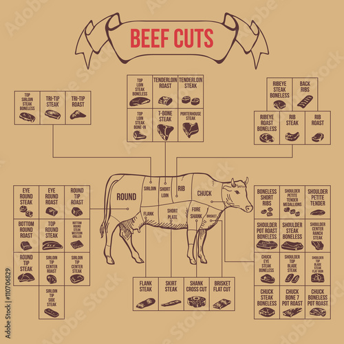 Fotografie, Obraz  Vintage butcher cuts of beef diagram