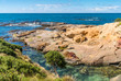 New Zealand colorful coast landscape