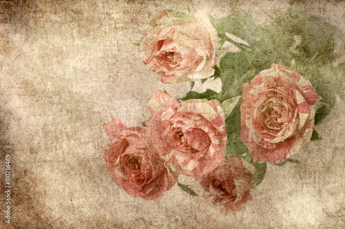 vintage rose background