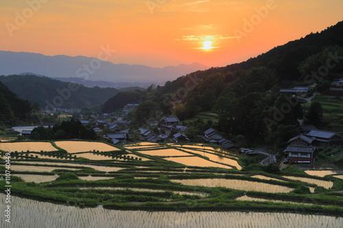 Foto auf Gartenposter Reisfelder 明日香村細川 夕日と棚田
