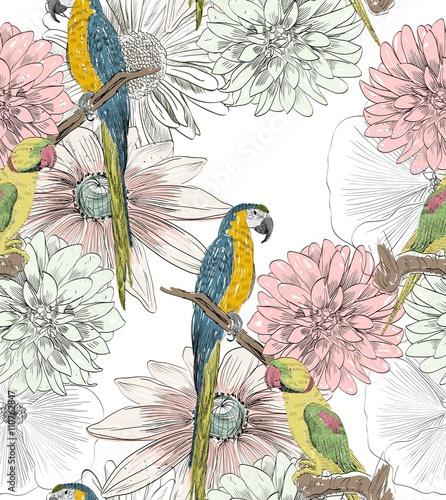 wzor-w-papugi