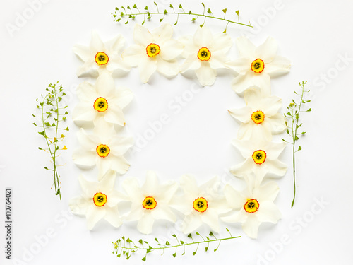 Cadres-photo bureau Narcisse Floral border of fresh narcissus flowers and hepherd's purses on