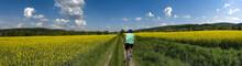 Weg Durch Das Rapsfeld FAhrrad