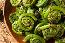 Raw Organic Green Fiddlehead F...