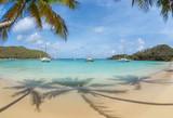 Mayreau - rajska plaża z palmami