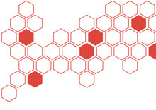 Fiesta Red Hexagon White Background Wall Pattern