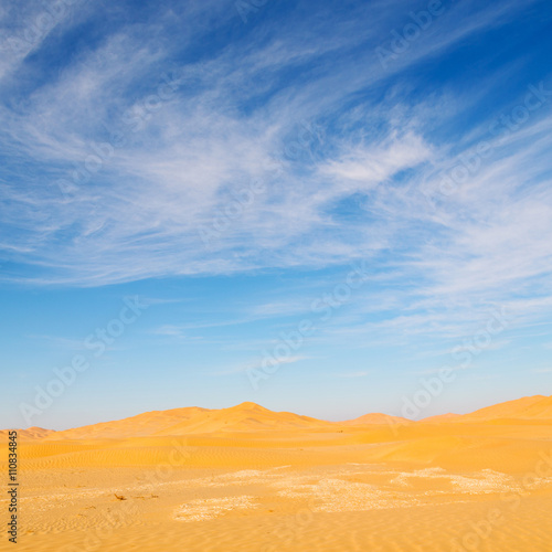 Foto op Aluminium Koraal in oman old desert rub al khali the empty quarter and outdoor