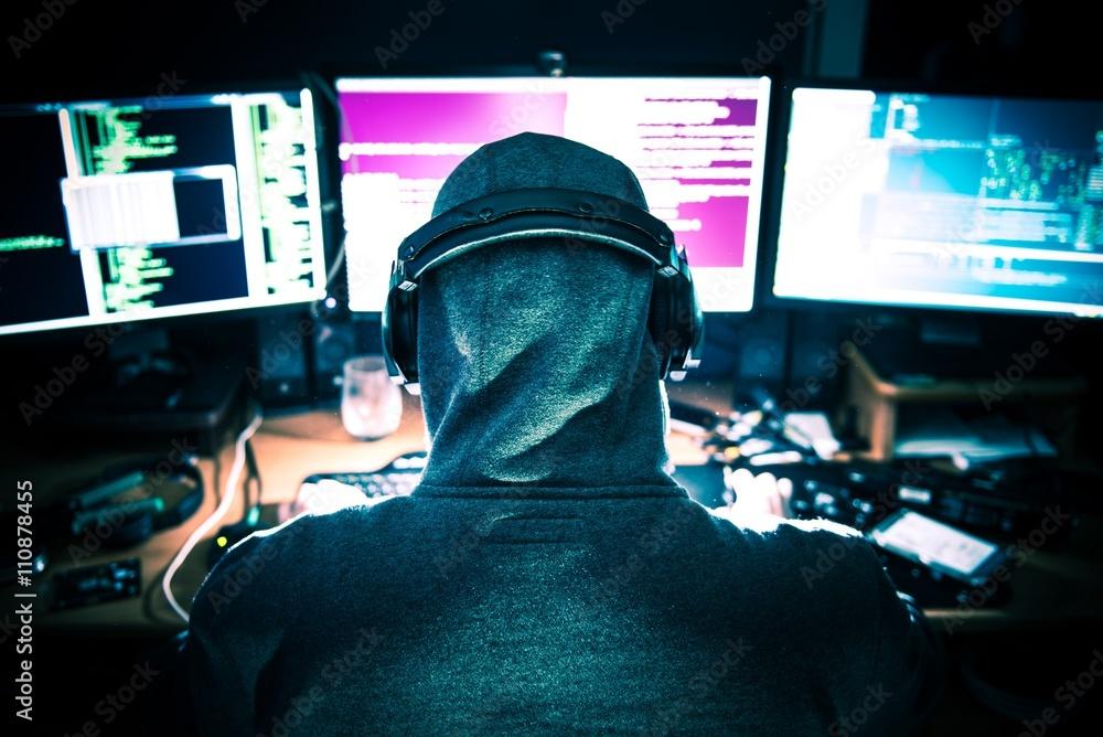 Fototapeta Professional Hacker at Work