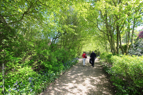Jardin paysager / Cassel (France) - Buy this stock photo and explore ...