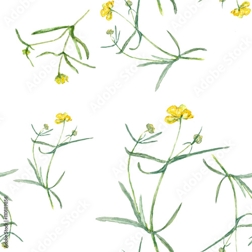 Pattern Yellow Flowers Drawing Watercolor Small Grasses And