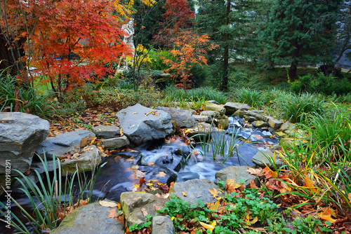 Canvas Print Colourful decorative waterfall in a beautiful autumn garden