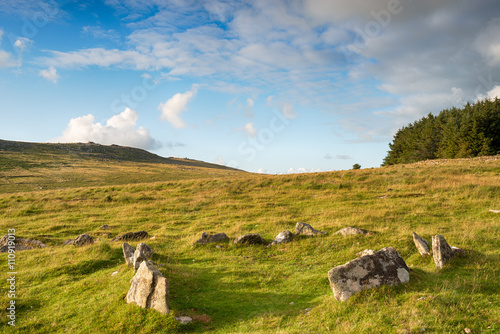 Photo Stands Roe Bodmin Moor Hut Circle