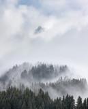 mgła jodła góra mgła wysokość alpy żeglarstwo krajobraz fryz - 110957476