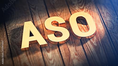 Acronym ASO on wood planks Canvas Print