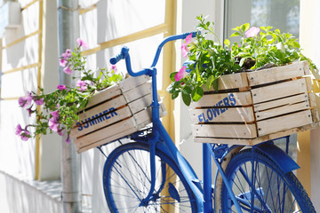 Panel Szklany Podświetlane Rower old bicycle with flowers box