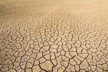 View Of Dried Cracked Mud On Floodplain, Djoudj National Park, Senegal