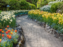 Paved Walkway In The Spring Garden