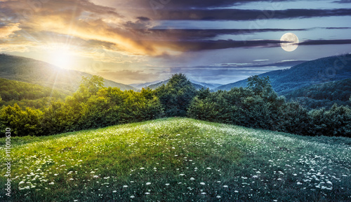 composite landscape with forest in mountains