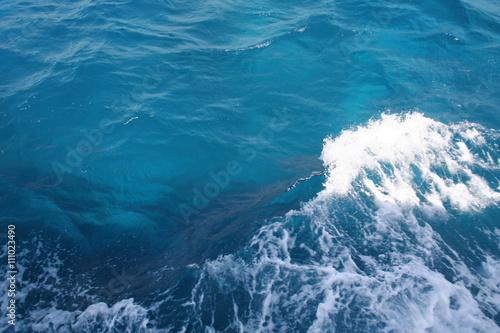 Stickers pour porte Aufgewühltes Meer durch Motorboot bei Ras Mohammed