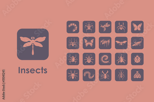 Fotografía  Set of insects simple icons