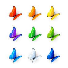 Set Of Nine Multicolored Butterflies