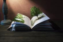 Story Telling Books