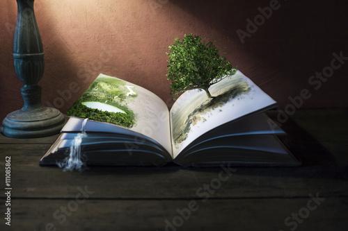 Fotografie, Obraz  Story Telling Books