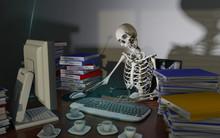 Overwork Death