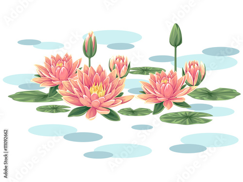Pink waterlilies vector Wallpaper Mural