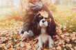 canvas print picture happy child playing with her spaniel dog in autumn