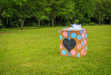 Gender Reveal Party Box: A Ge...